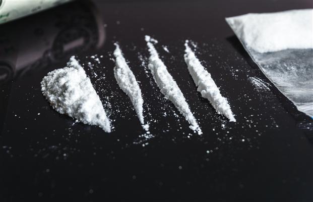 Brezilya'dan gelen bir gemideki konteynerde 220 kilogram kokain ele geçirildi