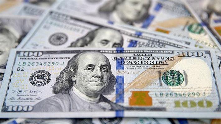 Dolar 8.41 TL'yi, Euro 9,86 TL'yi  gördü